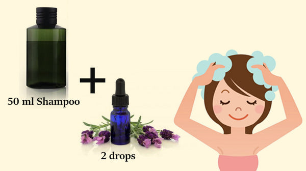 lavender essential oil use in shampoo