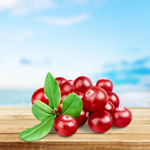 Cranberry Fragrance Oil - Your Crafts