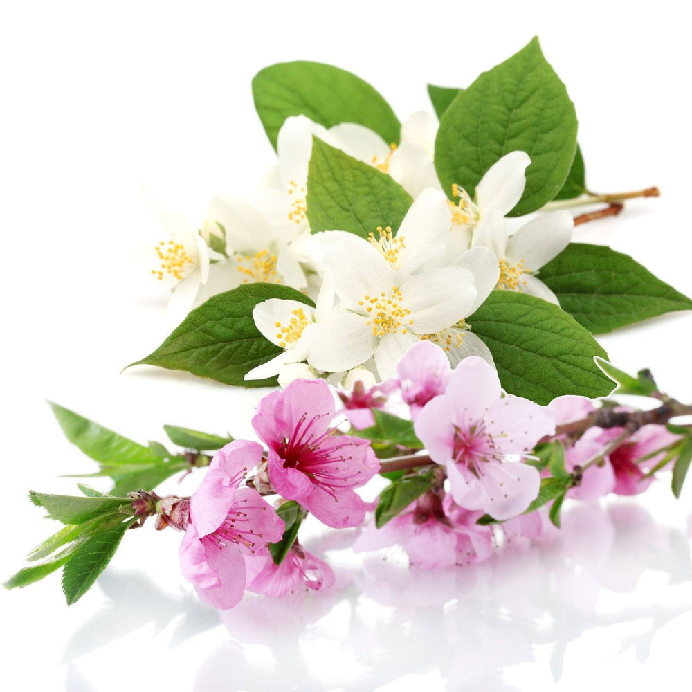 Peach Blossom & Water Jasmin Fragrance Oil - Your Crafts
