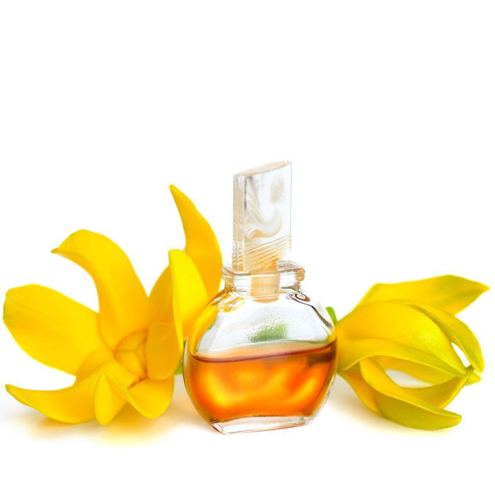 Ylang Ylang Fragrance Oil - Your Crafts