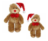 TED LE TEDDY <br> small + large