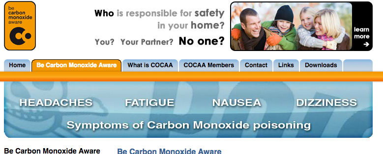 Solid Fuel Safety: Be Carbon Monoxide Aware