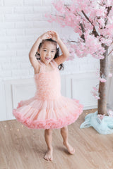 Ballerina Tutu Dress (Grey)