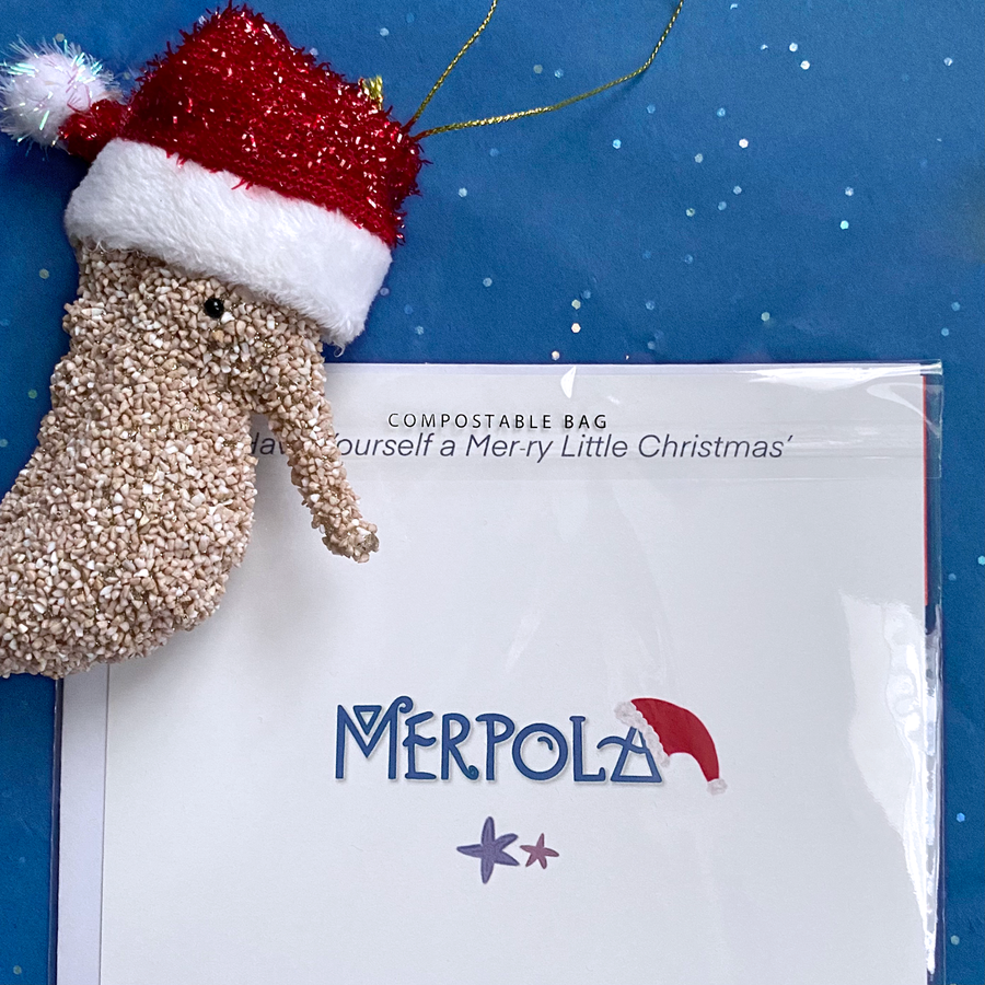 Holiday Xmas Card - Have Yourself a MeRry Little Christmas