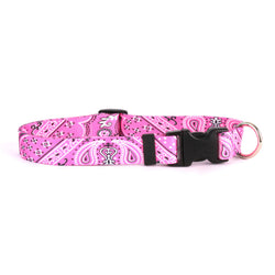 pink dog collar with bandana pattern