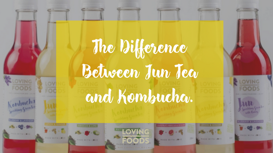 The Difference Between Jun Tea and Kombucha.