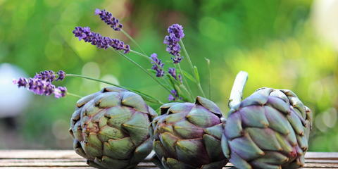 Discover why Everyone's Talking About Gut Microbiome - Plant-Based Foods - Artichokes