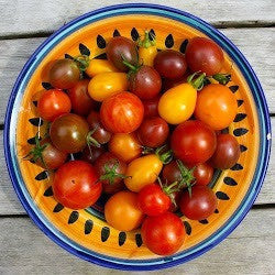 Cherry Tomato Collection - Five Heirlooms