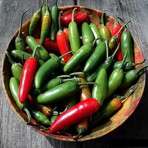 Serrano Chile -  Heirloom Pepper