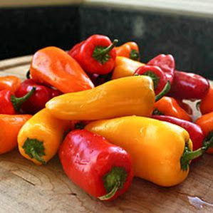 Romanian Rainbow  Heirloom Sweet Pepper