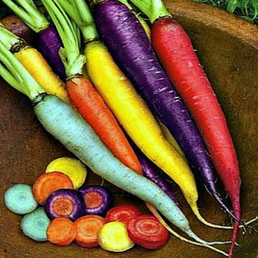 Rainbow Carrot Mix   Seven Crazy Colors