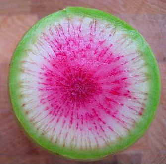 Watermelon Radish - Asian Heirloom