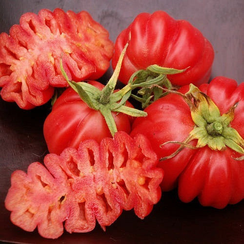 Zapotec Pleated - Heirloom Tomato