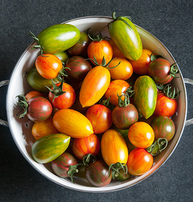 Artisan Tomato Collection - Five Future Heirlooms