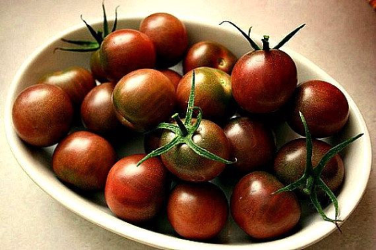 Black Cherry Tomato, Top Ten List, super productive on vigorous vines, hard to find seeds