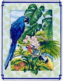 Macaws of the Amazon, Vickery Collection