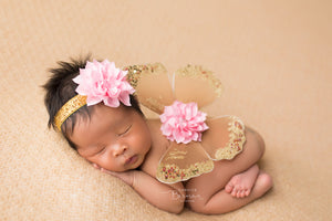 Gold Butterfly Wings with Pink Flower Headband - newborn photo prop