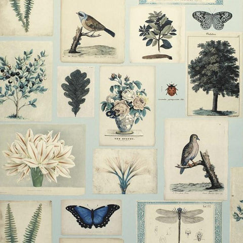 Designers Guild UK Wallpaper - John Derian Flora & Fauna - Tea Pea