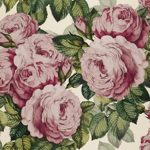 Designers Guild UK Wallpaper - John Derian The Rose - Tea Pea