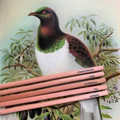 Emma Makes Pencil Pack - Native Birds - Tea Pea Home