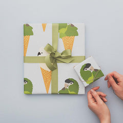 The Kiss Co The Great New Zealand Wrapping Paper Book - Nature Edition