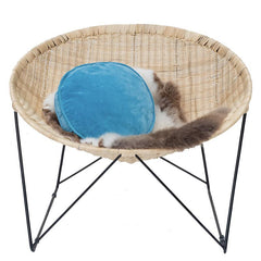 Tea Pea Home Mosley Coolie Chair - Tea Pea Home