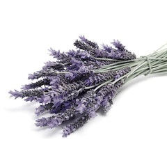 Real World NZ Lavender