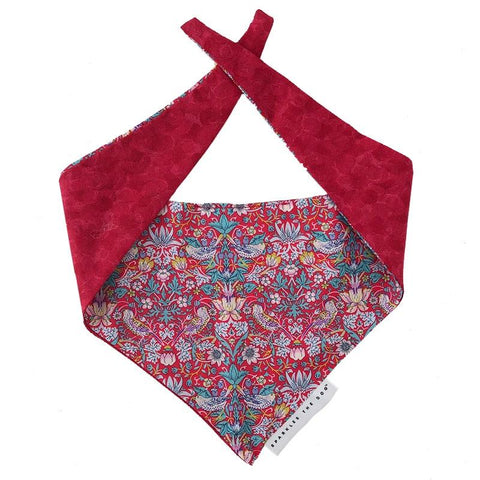 Sparkles The Dog Bandana - Red - Tea Pea Home