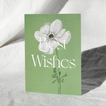 White Anemone - Best Wishes Card