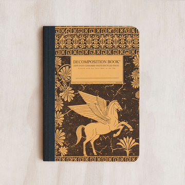 Decomposition Notebook- Pegasus