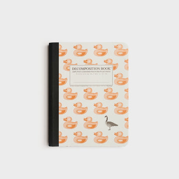 Decomposition Notebook - Duck Duck Goose