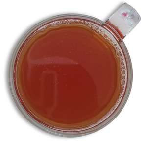 Load image into Gallery viewer, Masala Chai Black Tea Concentrate -Honey Infused Tea