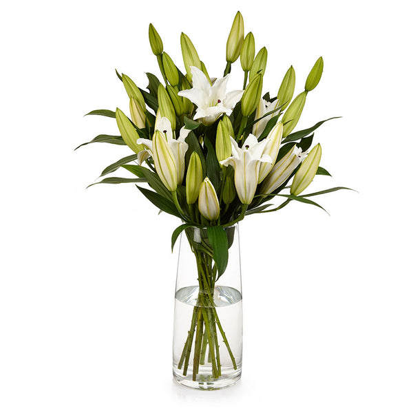 Oriental Lilies Cut Flowers For Home Arrangements From Bills