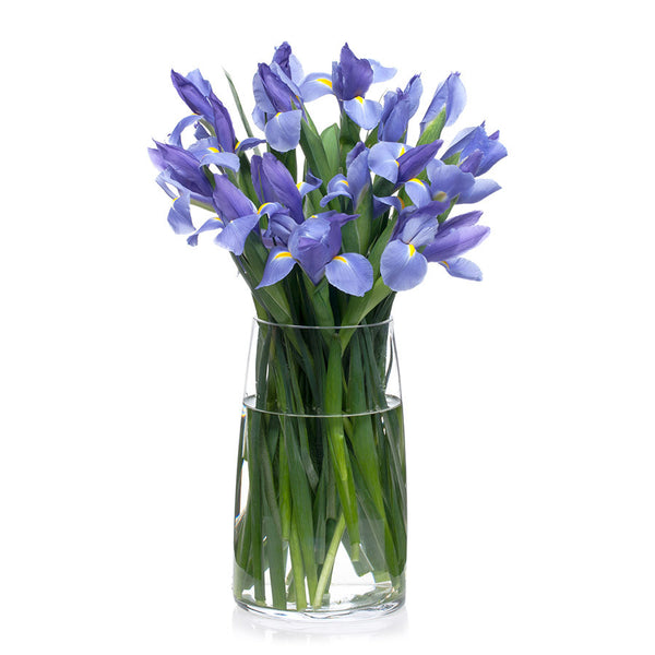 Iris, order these fresh flowers today from Bill's.