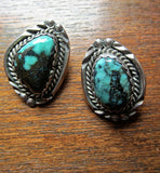 Handsome Rainbow Turquoise Post Earrings by L. Platero