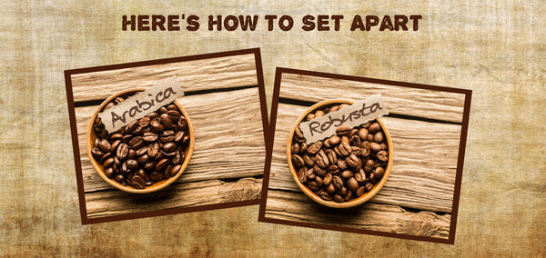 Here's How to Set Apart Arabica and Robusta Beans