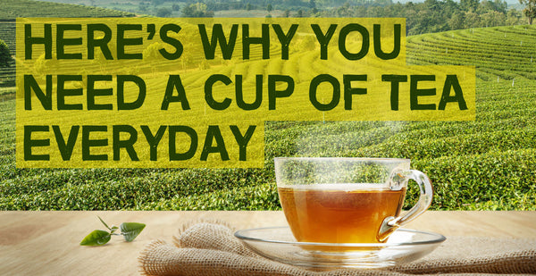 Here's Why You Need a Cup of Tea Everyday.