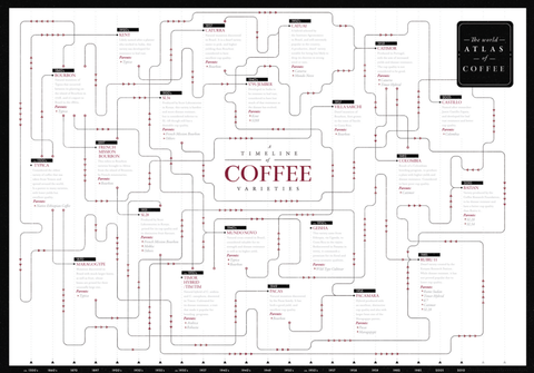 Coffee Variety Timeline Poster