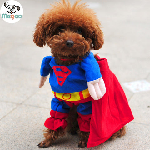 Cool Superman Dog Costume