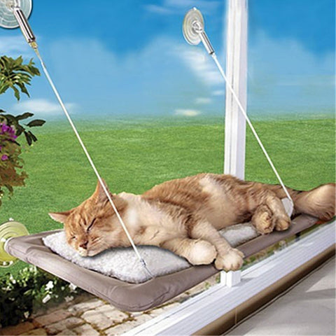 Cat Window Mounted Bed Set