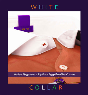 White Collar Shirts