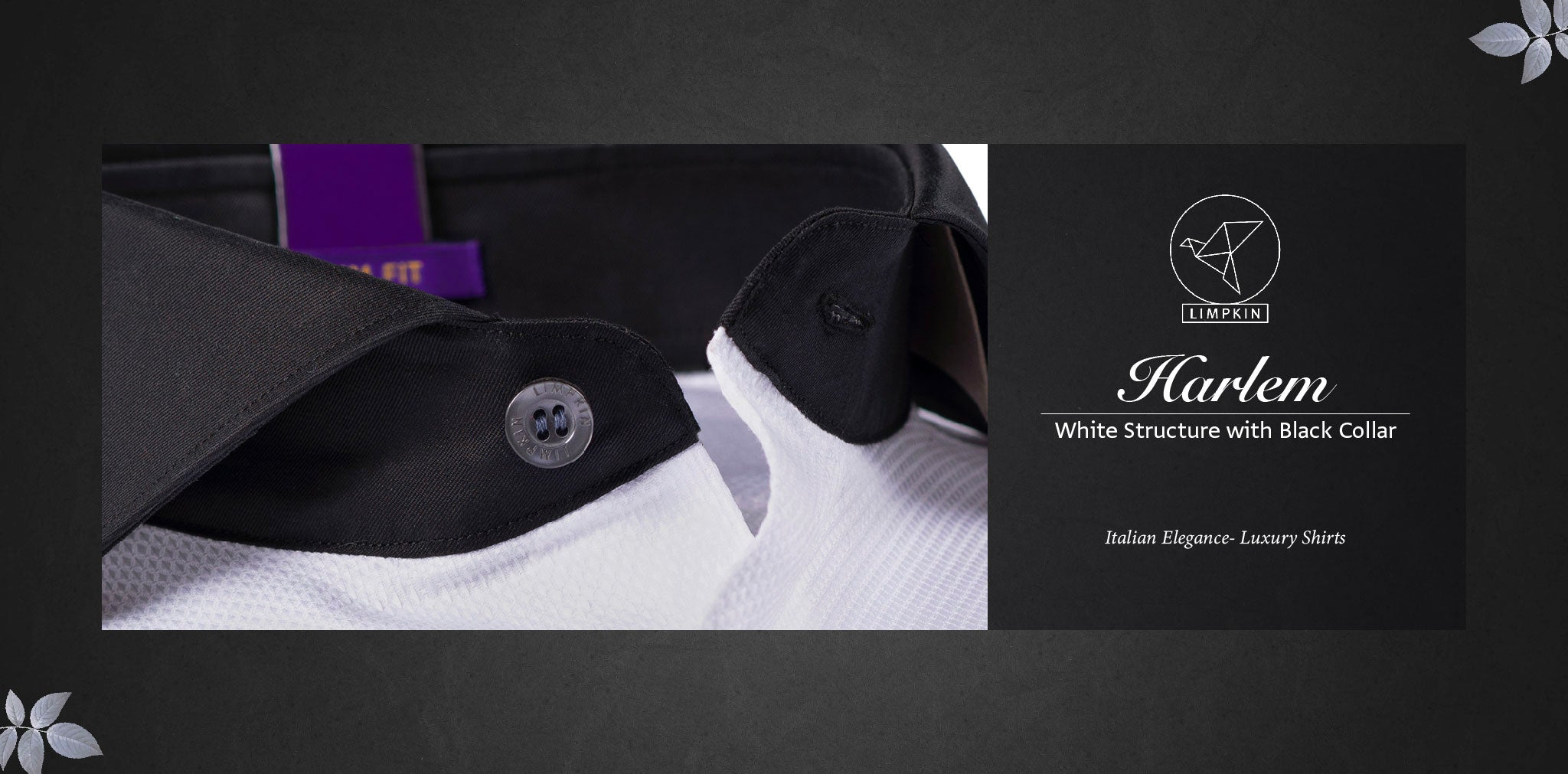 Harlem- White Structure with Black Collar- 2 Ply Pure Egyptian Giza Cotton- Delivery from 20th Oct - Banner