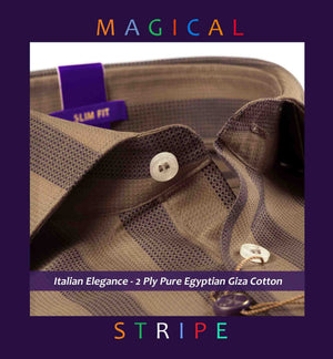 Elgin- Beige & Brown Structure Stripe