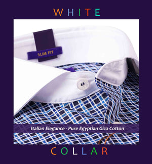 DAVOS- DARK NAVY & BLUE CHECK & WHITE COLLAR