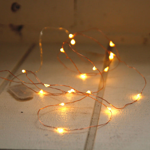 Seed lights copper/silver 2m
