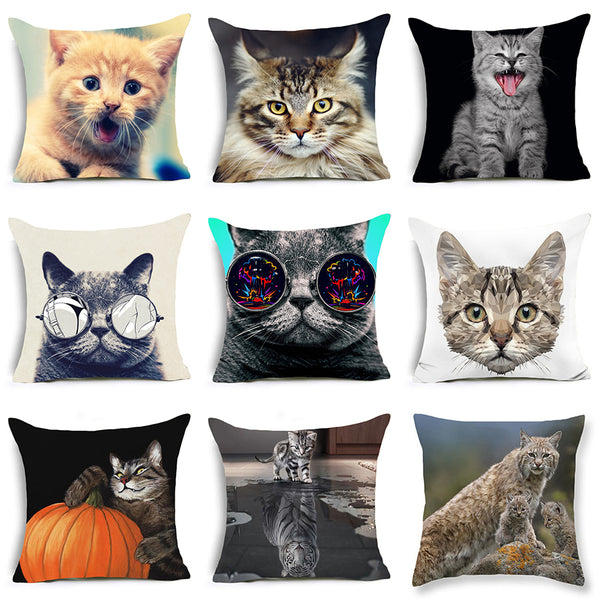 Cool Cats Cushion Cover 6