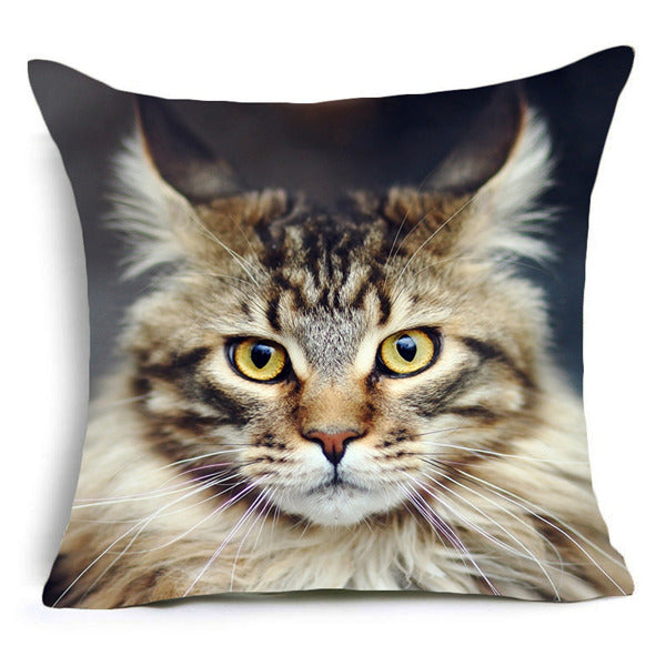 Cool Cats Cushion Cover 1