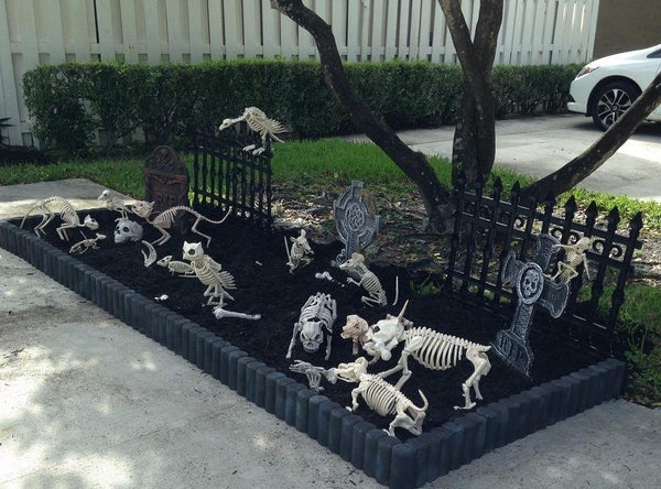 Black Cat Skeleton for Creepy Halloween Decoration