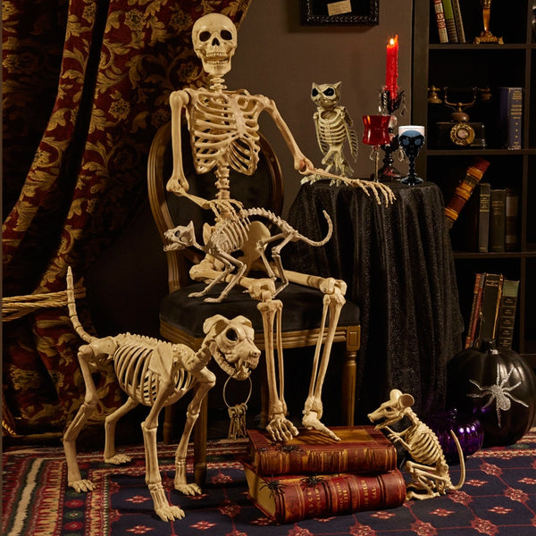 Crow Movable Skeleton Creepy Halloween Decoration