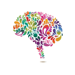 Brain & Memory Functions - Herbal Brain Supplements